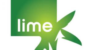 lime connect, disability,